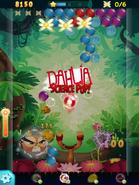 ABPop Dahlia New 2