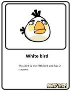 White-card