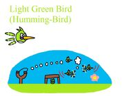 Light Green Bird (Humming - Bird)