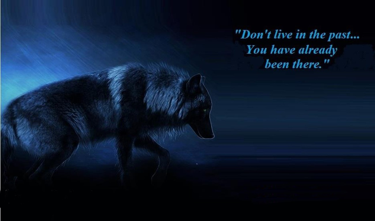 white wolf quotes - Google Search | White Wolf | Pinterest | White ...