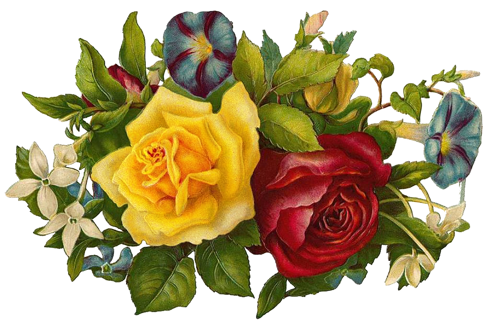 Picture files with transparent backgrounds flowers - png picture format bibliography