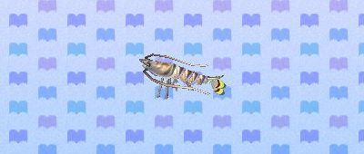 File:Tiger prawn.png