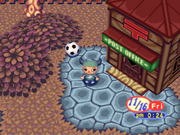 Post Office and ball Animal Forest 64