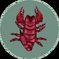 Scorpion (City Folk)