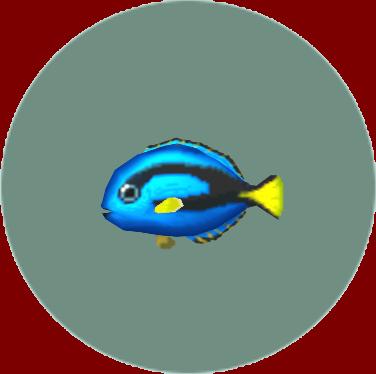 File:Surgeonfish (City Folk).png
