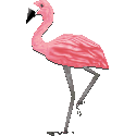 File:Mrs.flamingocf.png