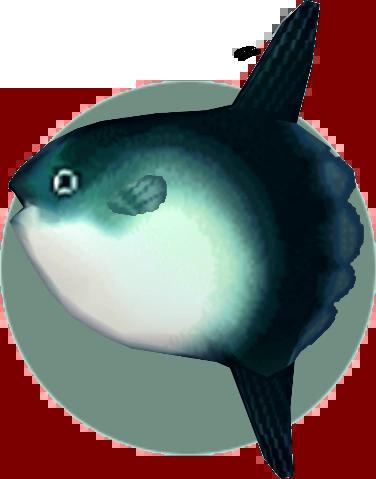 File:Ocean Sunfish (City Folk).png