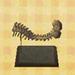 File:Ankylo tail (new leaf).jpg