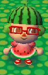 Watermelon Look