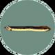 Eel (City Folk)