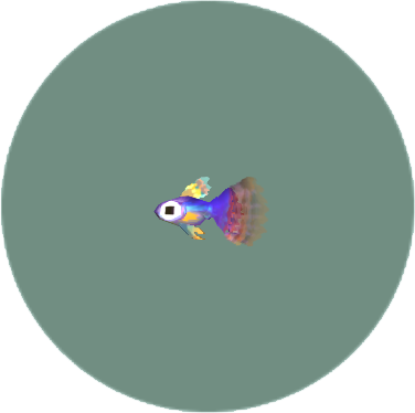 File:Guppy (City Folk).png