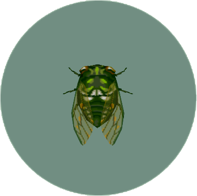 File:Robust Cicada (City Folk).png
