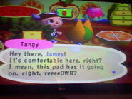 Tangy Animal Crossing GC