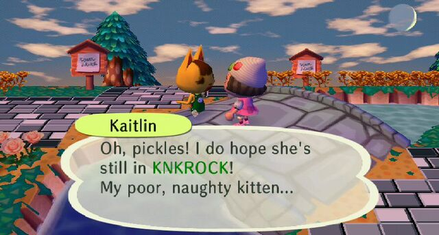 File:Kaitlin in town.jpeg