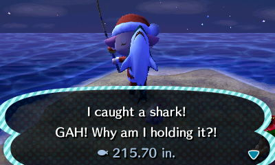 File:Shark caught.JPG