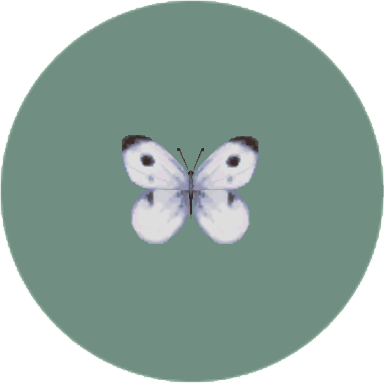 File:Common Butterfly (City Folk).png