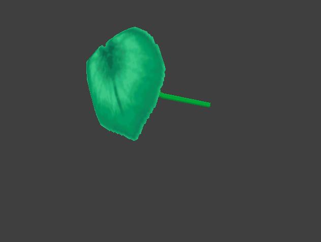 File:Umbrella leaf umbrella.png