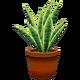 Snakeplantcf