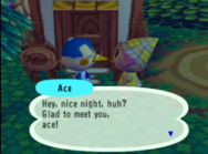 Meeting Ace