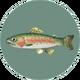 Rainbow Trout (City Folk)