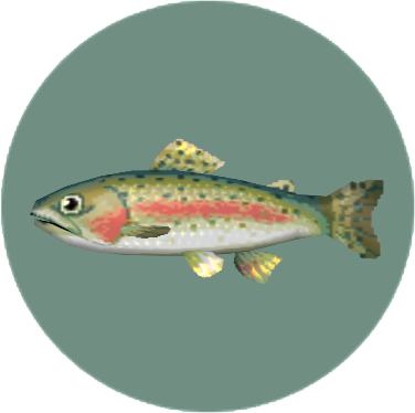 File:Rainbow Trout (City Folk).png
