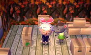 Deirdre ACNL Moving Out