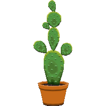 File:Cactuscf.png