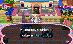 Bunny Day