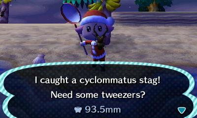 File:Cyclommatus caught.JPG