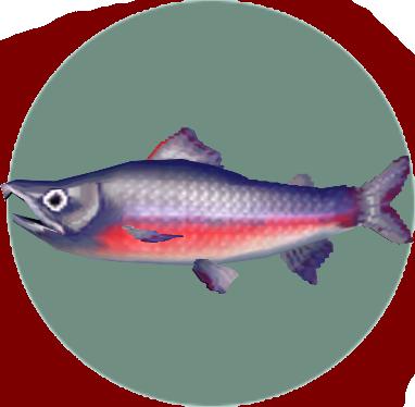 File:Salmon (City Folk).png