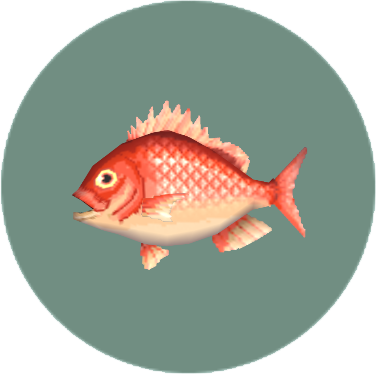 Red Snapper (City Folk)
