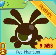Diamond-Shop Pet-Phantom