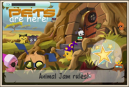 JAG Pet Are Here