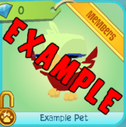Shop Example-Pet