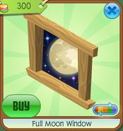 Full Moon Window