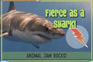 Sharkjag