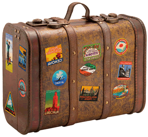 image travel suitcase 1 png animal jam wiki fandom powered by wikia. Black Bedroom Furniture Sets. Home Design Ideas