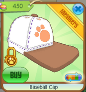 Baseball cap4