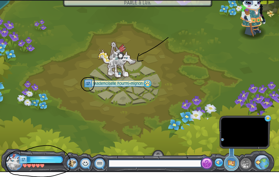 Welcome to animal jam wiki animal jam wiki fandom powered by