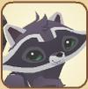Raccoon Profile-0