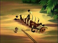 Warthog corpse