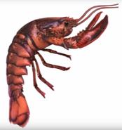 Lobster from animorphs 5 the predator