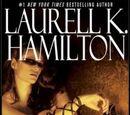 The Harlequin (novel)