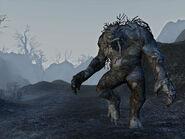 Frostswamp 5