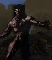 Werewolf web