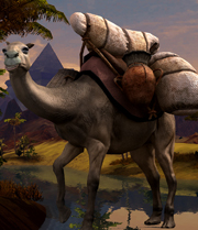 File:Camel big.jpg