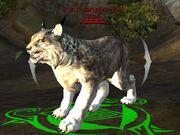 Lynx forerunner