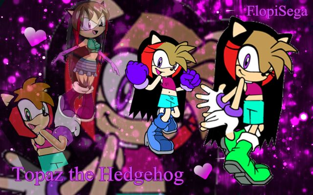 File:Topaz the Hedgehog Wallpaper.jpg