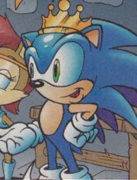 Sonic future01