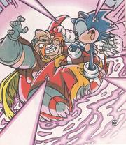 Sonicrobotnikfight